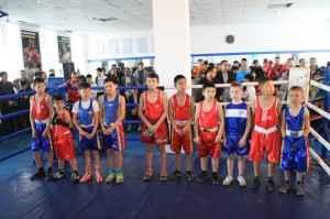 Балғын боксшылар бәсекесі